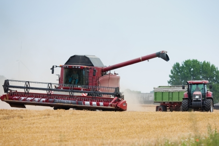 harvester: Combine harvester and tractor working together on a field in late summer to bring in the wheat harvest  Stock Photo