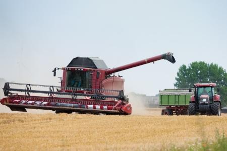 cosechadora: Cosechadoras y tractor trabajando juntos en un campo al final del verano para recoger la cosecha de trigo