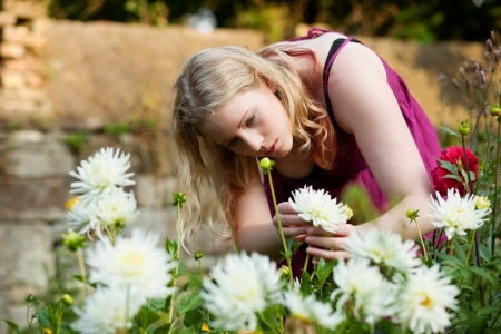 Woman doing garden work in the chrysanthemums on a beautiful summer day Stock Photo - 17743364