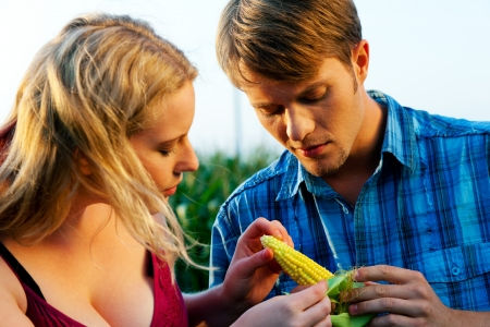 Farmers - man and woman - checking the corn for the harvest in  a beautiful sunset photo