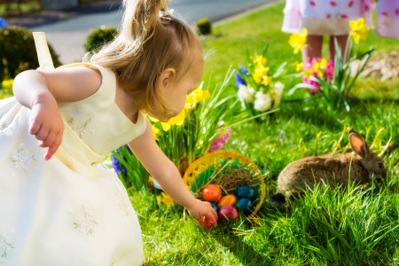 easter egg hunt: Children on an Easter Egg hunt on a meadow in spring, in the foreground a living Easter bunny is waiting and a girl finds Easter eggs