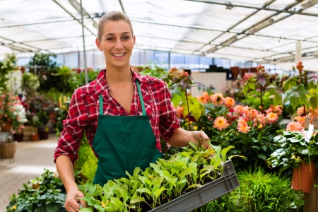 Female florist or gardener in flower shop or nursery photo