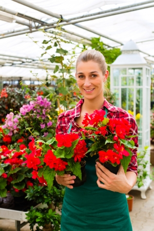 florist shop: Female florist or gardener in flower shop or nursery