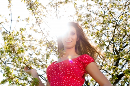 sunlit: Young beautiful Girl in spring and tree blossom in summer dress Stock Photo