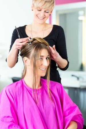 Hairdresser - hair stylist cutting hair, a female customer gets a haircut Stock Photo - 19226310