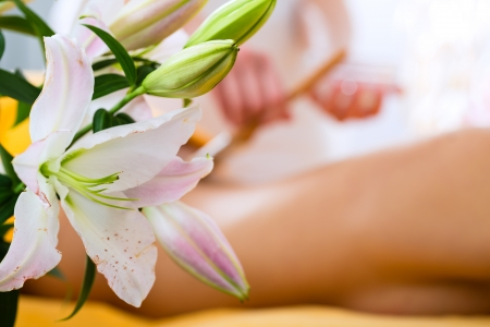 Wellness - woman receiving body or back massage in spa Stock Photo - 19806457