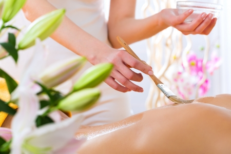 Wellness - woman receiving body or back massage in spa Stock Photo - 19806439