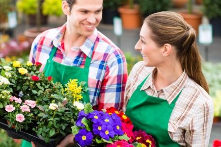 flower nursery: Florists or gardeners in flower shop, greenhouse or nursery