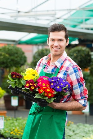 flower nursery: Florist or gardener in flower shop, greenhouse or nursery Stock Photo