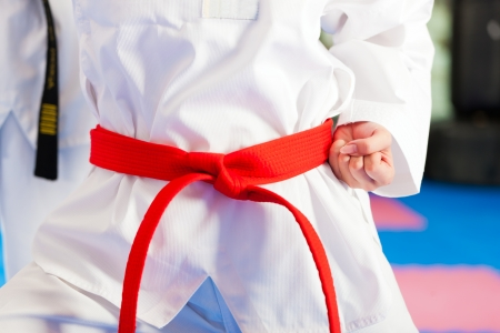 People in a gym in martial arts training exercising Taekwondo, the trainer has a black belt Stock Photo - 23964557
