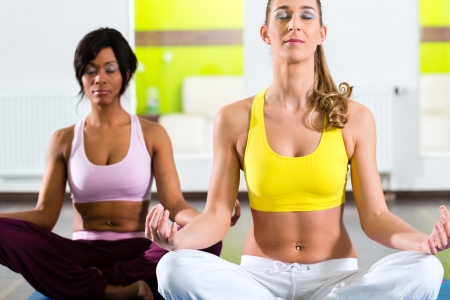 Young women doing yoga and meditation in gym for better fitness, caucasian and latina people Stock Photo - 23964953