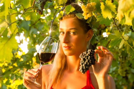 Woman with glass of wine in the vineyard with sunshine photo
