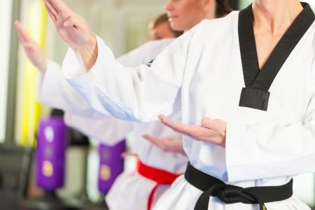 defensa personal: Personas en un gimnasio de artes marciales formaci�n ejercicio de Taekwondo, el entrenador tiene un cintur�n negro.