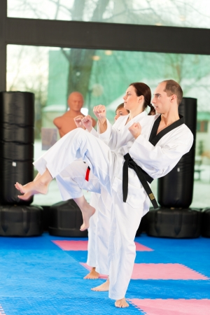 martial arts: People in a gym in martial arts training exercising Taekwondo, the trainer has a black belt Stock Photo