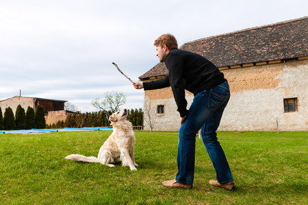 man dog: Young man playing with his dog on a meadow with a stick Stock Photo