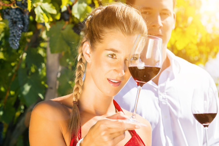 Woman and man in vineyard drinking red wine in the sunshine clinking the glasses photo