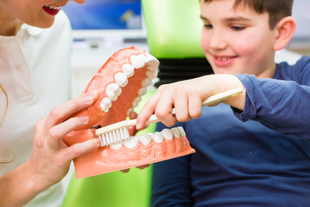 Female dentist explaining boy cleaning tooth with toothbrush on model  photo