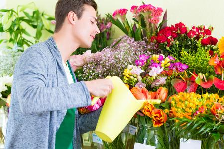 regar las plantas: Florista de trabajo en la tienda de flores regar las plantas Foto de archivo