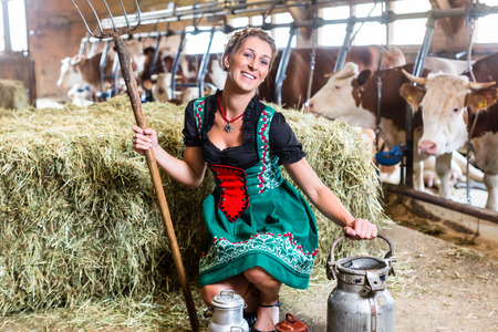 dirndl dress: Bavarian woman with sexy Dirndl dress, milk can and pitchfork in cowhouse Stock Photo