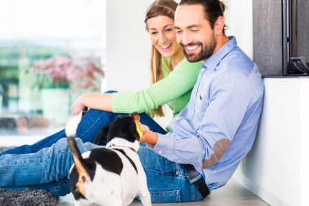 man dog: Couple sitting in living room floor playing with dog