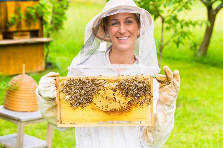 Imker controlerende bijenkorf en kam kader Stockfoto