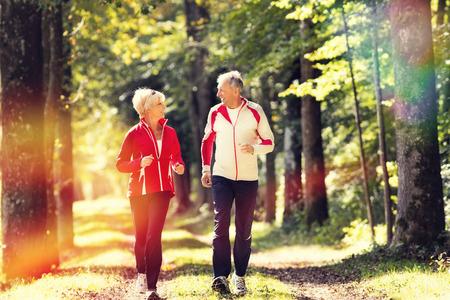 an elderly person: Pareja mayor haciendo deporte al aire libre, correr en un camino forestal en el oto�o
