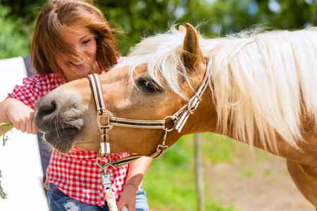 girl on horse: Woman feeding horse on pony farm