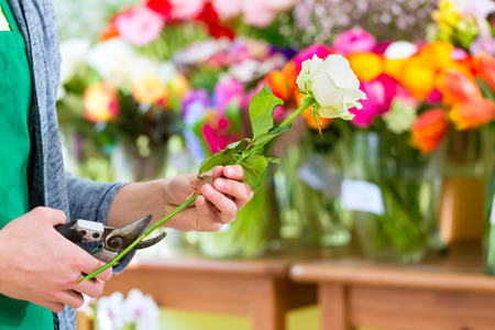 florist shop: Young handsome florist cutting rose with tongs in shop Stock Photo