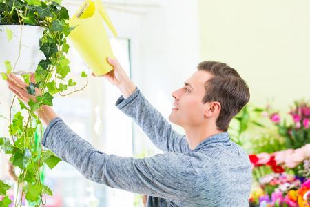 regar las plantas: Funcionamiento del florista en departamento de flor regar las plantas