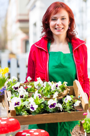 Florist delivering palette of flowers or viola to shop photo