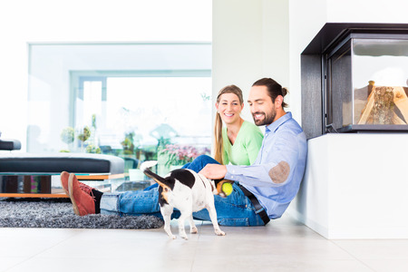 living together: Couple sitting in living room floor playing with dog