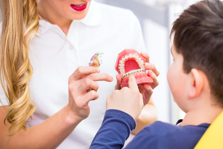 braces: Female Orthodontist explaining boy braces