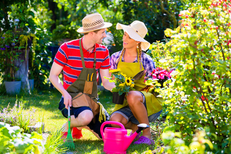 ewer: Couple planting flowers in garden Stock Photo