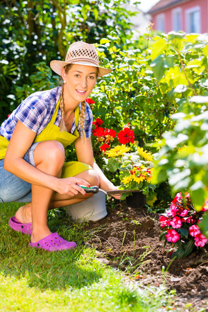 woman in garden planting flowers Stock Photo