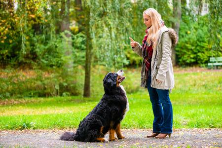 obedience: Muchacha en parque del oto�o entrenar a su perro en obediencia dando la orden de sentado