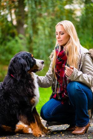 mujer con perro: Mujer que camina el perro en el parque de otoño Foto de archivo