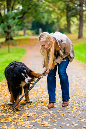 dirt path: Woman and dog at retrieving stick game in fall park on dirt path Stock Photo
