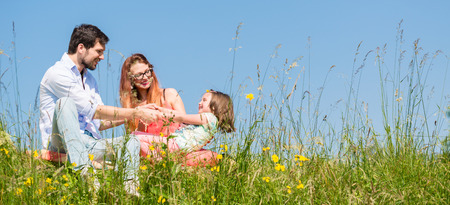Family holding hands in summer in the grass Stock Photo