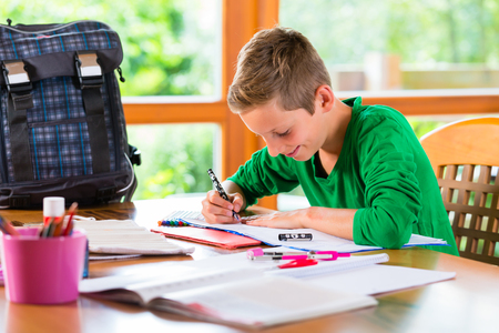 assignment: Student doing homework assignment for school at home