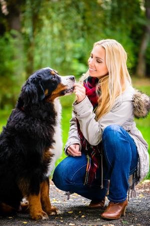 treats: Mujer que camina el perro en el parque de otoño Foto de archivo