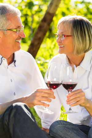 lady in red: Seniors sitting in vineyard drinking red wine, woman and man toasting each other Stock Photo