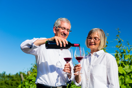 senior men: Senior woman and man drinking wine in vineyard toasting with the glasses