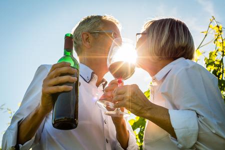 iluminado a contraluz: Senior pareja brindando con copas de vino en la viña, mujer y hombre se tuesta