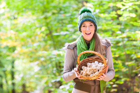 hongo: Mujer con la cesta llena de champiñones en el bosque