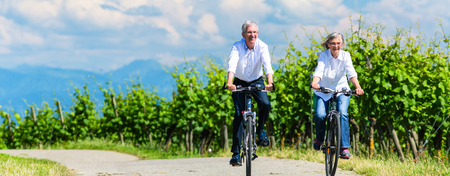 Seniors riding bicycle in vineyard together, panorama picture