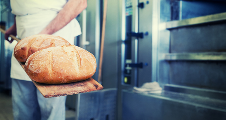 Baker in bakery with bread on shovel standing in front of oven, filtered image photo