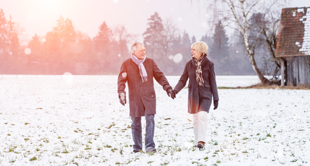 winter: Senior couple having walk in winter