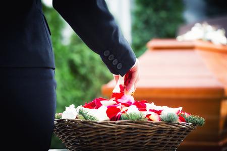관에는 장미 꽃잎을 쓴 장례식에 여자 스톡 콘텐츠