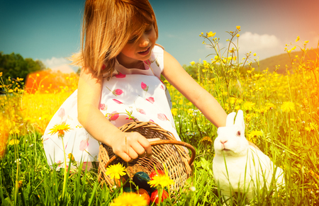 petting: Girl petting Easter bunny on meadow with eggs - filtered image Stock Photo