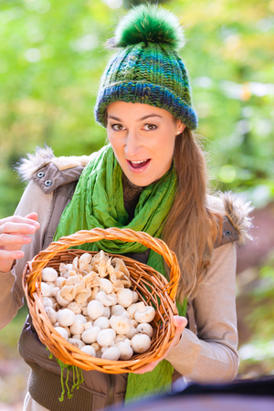 search searching: Woman with basket full of champignons in forest Stock Photo